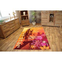 Children carpet DISNEY AKRYL HANNAH MONTANA 222