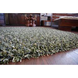 Teppich SHAGGY BRILLIANT 040 grun