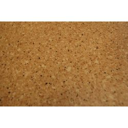 Podlahové krytiny z PVC KOMPAKT GLORIA 3569