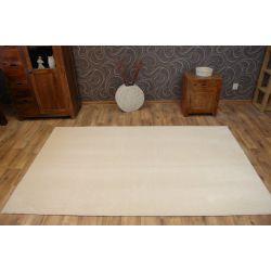 Carpet, wall-to-wall, ATTRACTION vanilla