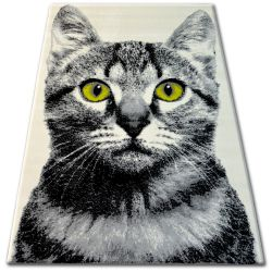 Carpet BCF FLASH 33319/160 - Cat